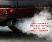 auto-inquinante-2